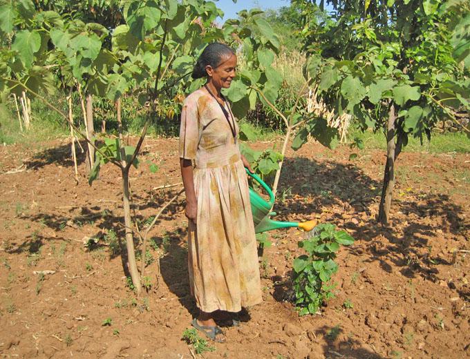 Kurs Gartenbau: In diesen Kursen lernen die Teilnehmerinnen, einen Gemüsegarten anzulegen, zu bewässern und gewinnbringend – z.B. für einen Marktverkauf – zu bewirtschaften.