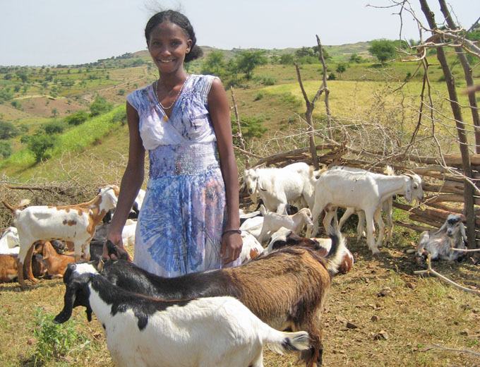 Kurs Tierzucht: Diese gesunde Ziegenherde bildet heute die Grundlage für ein stabiles Einkommen dieser erfolgreichen Kursteilnehmerin.