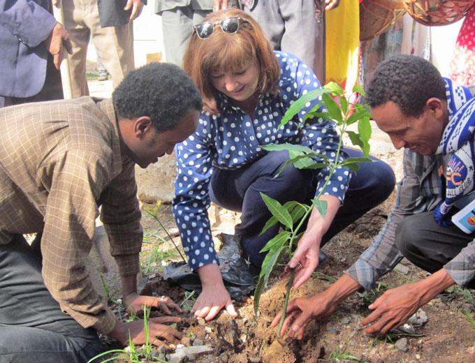 Veranstaltungspunkt: Baumpflanzung mit den verschiedenen Vertretern von kinder unserer welt, Partner-NGO REST, Stadt und Kirche.